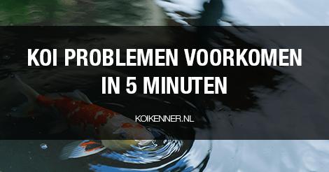 Koi problemen voorkomen in 5 minuten