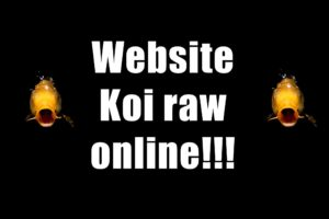 KoiRaw website online.
